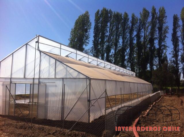 Tipos de invernaderos invernaderos dise o y for Construccion de viveros e invernaderos