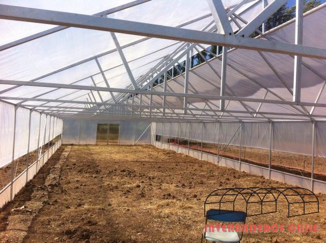 Tipos de invernaderos invernaderos dise o y for Vivero estructura