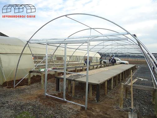 Tipos de invernaderos invernaderos dise o y for Construccion de viveros