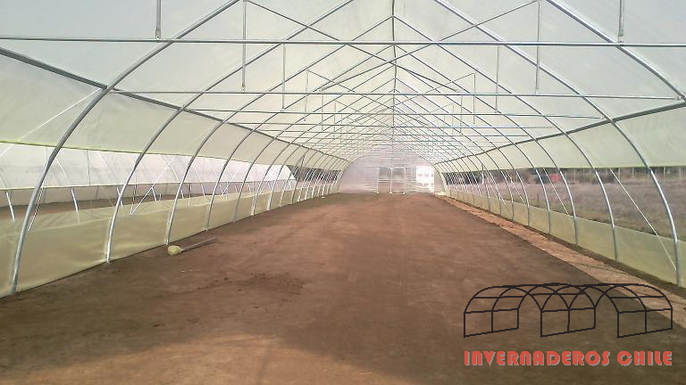 invernaderos de PVC