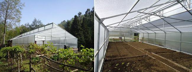 invernaderos y viveros en Chile