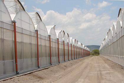Invernaderos Multitunel